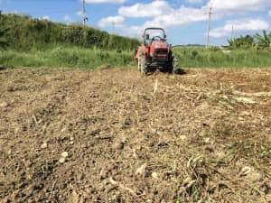 枯れ草をトラクターで鋤き込んだあとの畑の表面