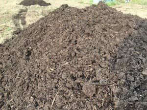牛糞堆肥の山に近づいてみた