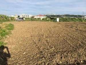 畝がない状態の真っ平らな畑