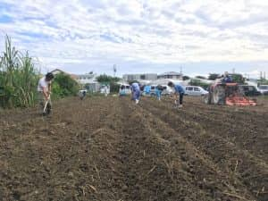 食育活動で使用する圃場を青壮年部メンバーで整備