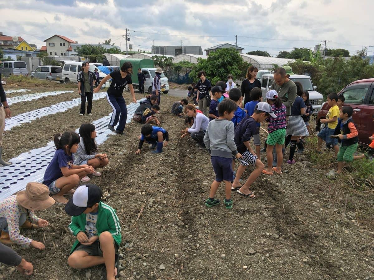 食育活動で子供たちにニンジンの播種をしてもらう