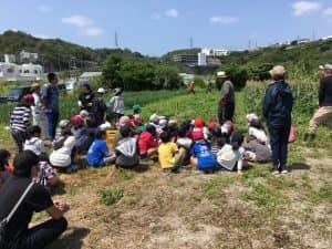 収穫方法の説明を受ける子供たち
